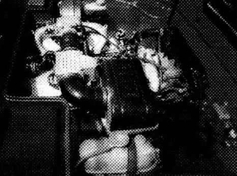Место под капотом волговский 402-й двигатель уступил шестицилиндровому, рядному, 2,8-литровому мотору от ВМW 528-й модели