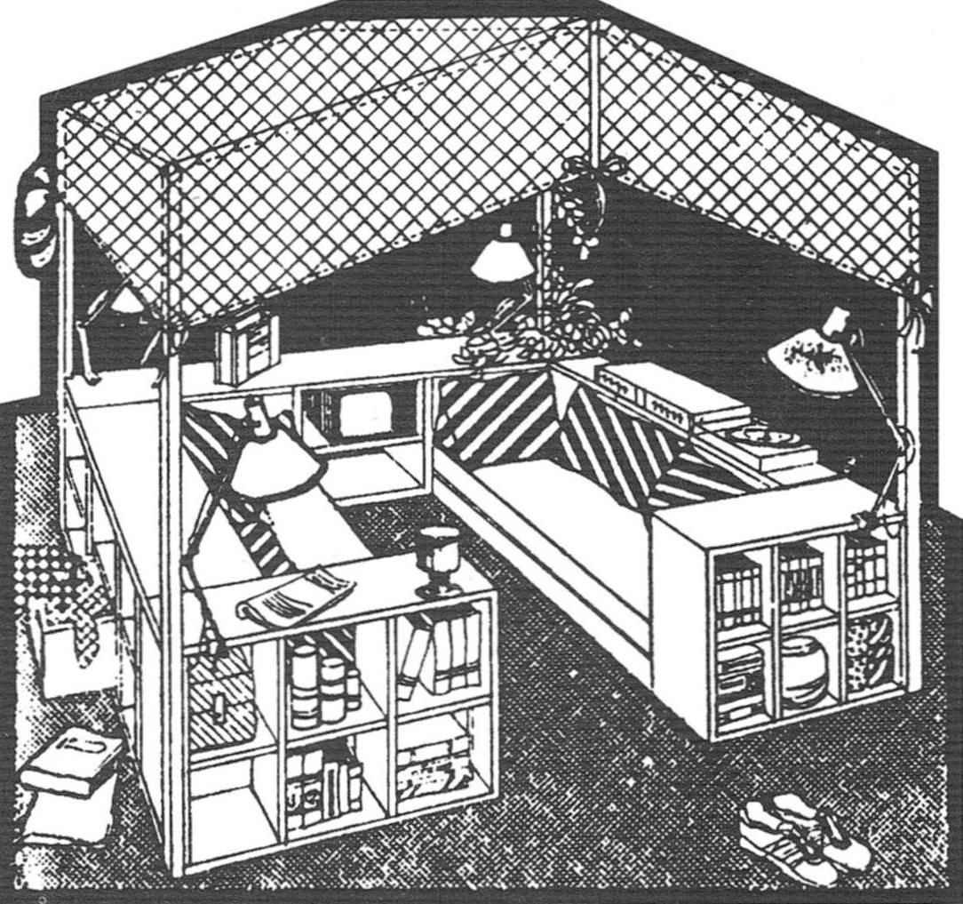 Уголок отдыха. Лёгкий полог с люстрой и комбинированное решение диванов с полками и торцевыми шкафчиками предоставляют максимум удобств