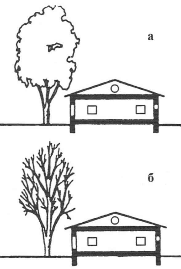 Рис. 9. Лиственные деревья защищают дом