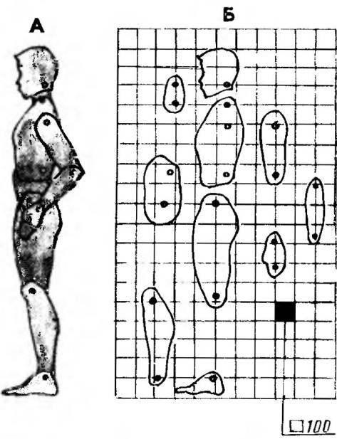 Шарнирный силуэт водителя (А) и составляющие его элементы (Б)