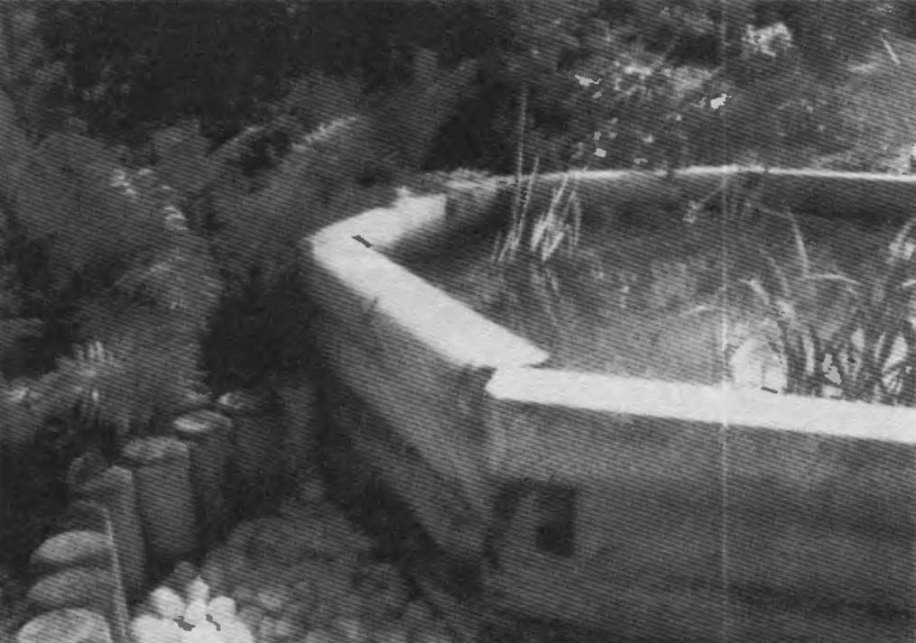 Фрагмент угла стенки бассейна: виден стык бревен «вперехлест»