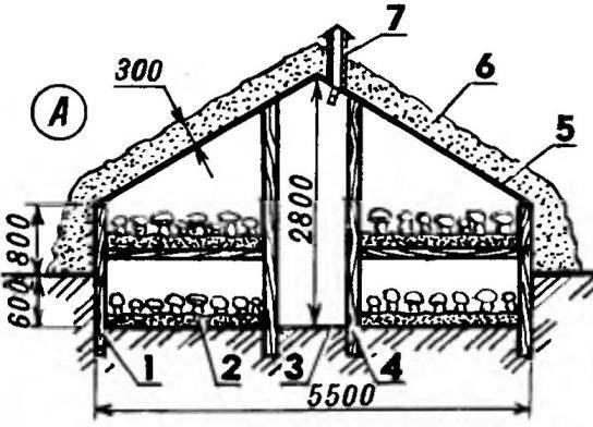 Длина 25—30 м. Полезная площадь 200—230 м^2
