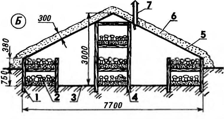 Длина 8, 4,16, 8 или 25,2 м. Полезная площадь 100, 200 или 300 м^2