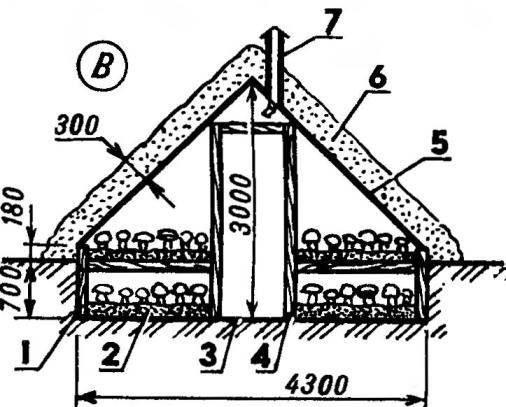Длина 20 м. Полезная площадь 123 м^2