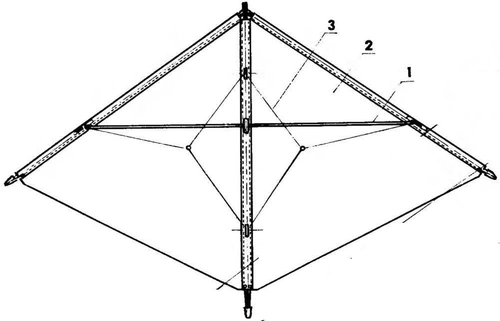 Акробатический змей-дельталст (вид снизу)