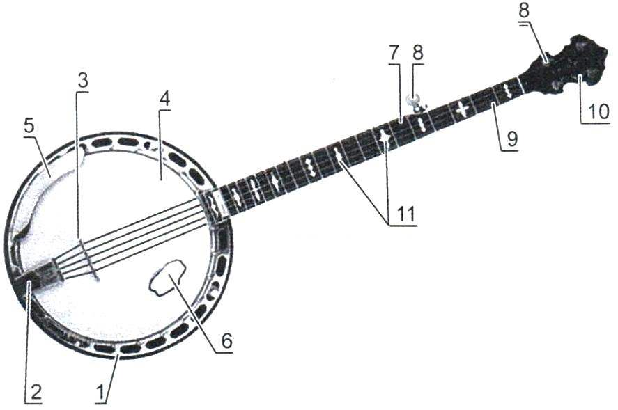 Общий вид банджо и его конструктивные элементы