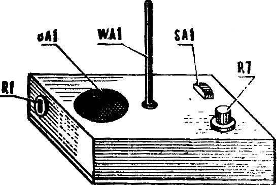 Рис. 4. Внешний вид терменвокса.