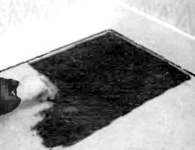 Нанесите клеящую мастику, разравнивая ее шпателем на площадь, соответствующую приблизительно 2—3 квадратным паркетным доскам.