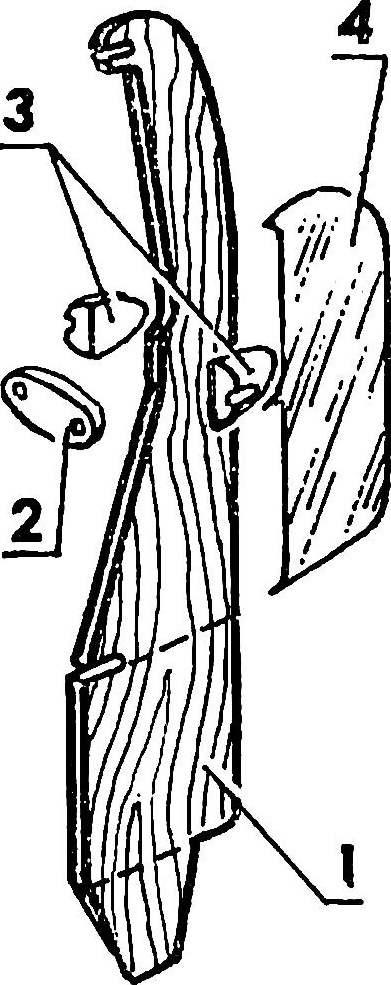 Strut-pylon.