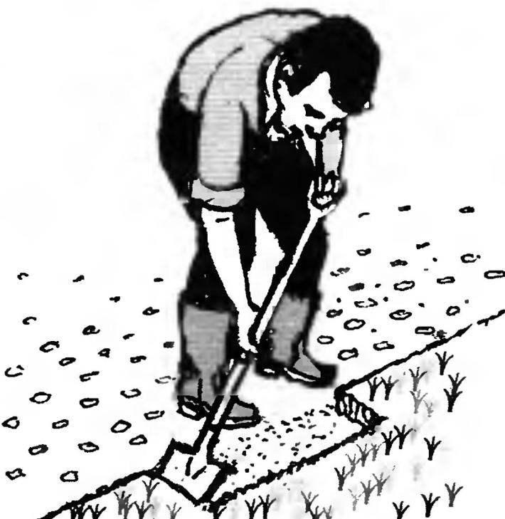 Снятие дефектного слоя газона совковой лопатой