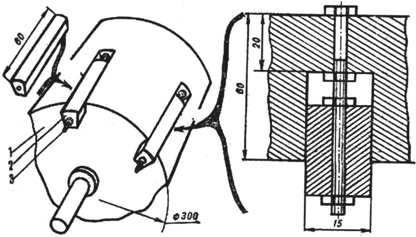 Fig. 4. Pocket seed