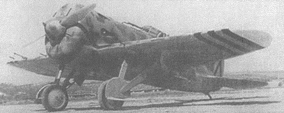 «Испанский» истребитель И-16 (франкистский)