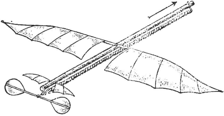 «Плэнофор» А. Пено — первая летающая модель аэроплана, устойчиво державшаяся в воздухе.