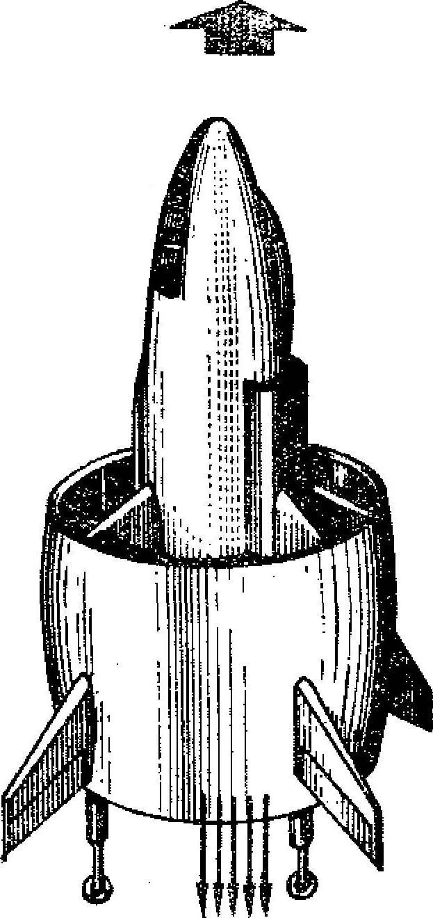 Рис. 2. «Колеоптер».
