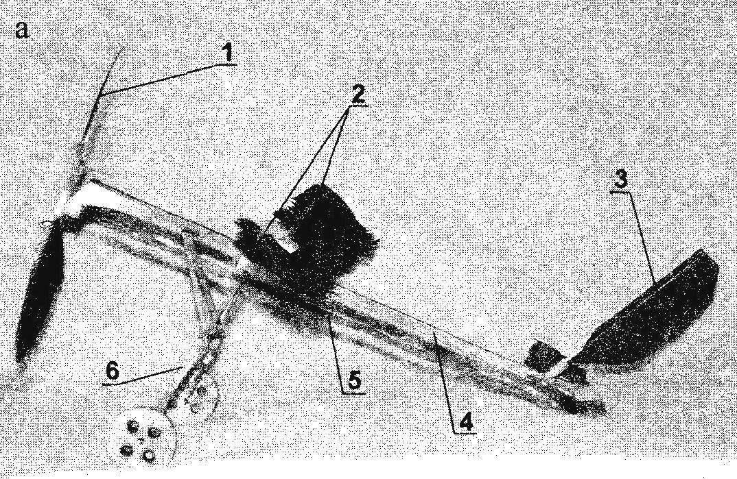Летающая комнатная модель самолета из птичьих перьев (а, б)