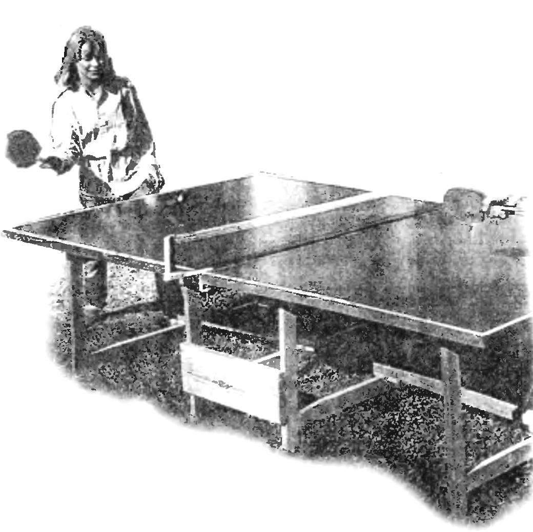 PING-PONG ON THE LAWN