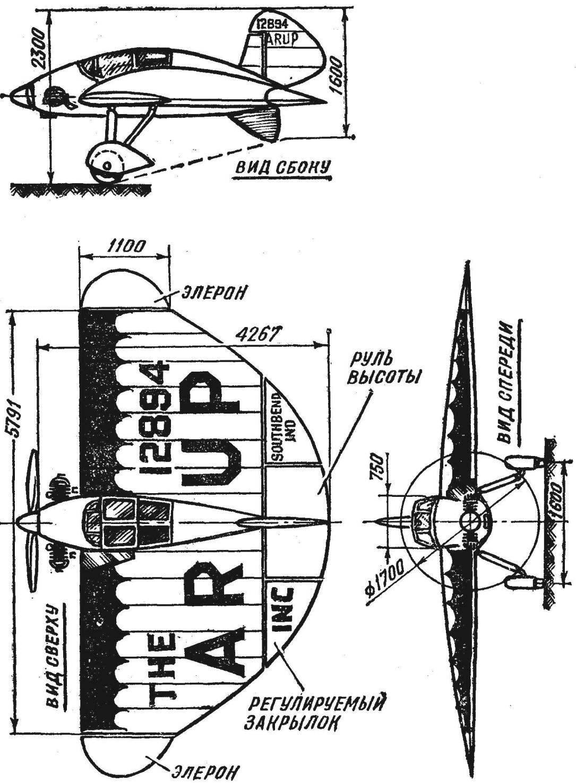 Рис. 2. Самолет «Эруп».