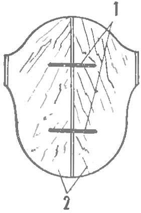 Рис. 1. Болванка в разрезе