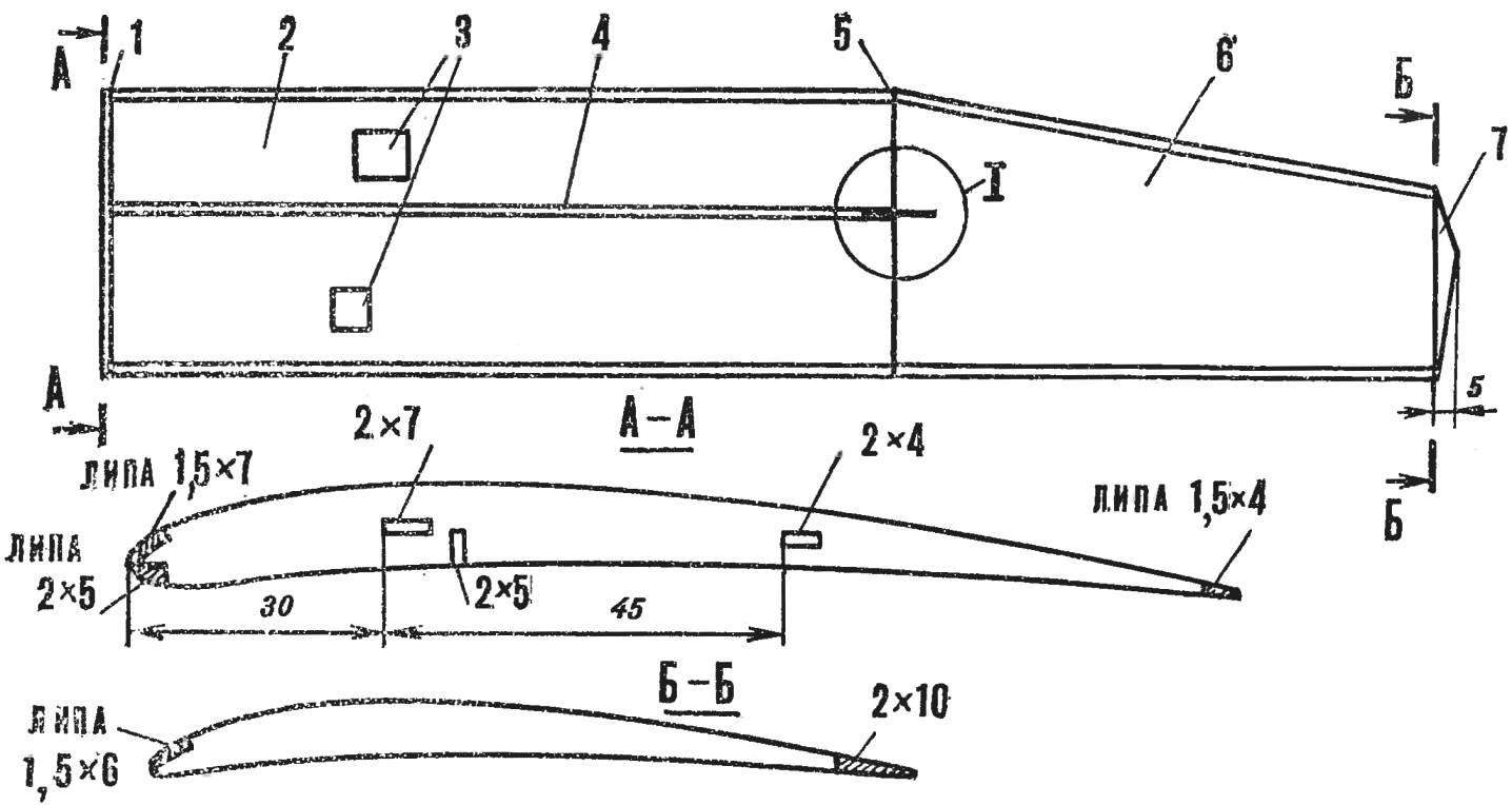 Fig. 4. Wing