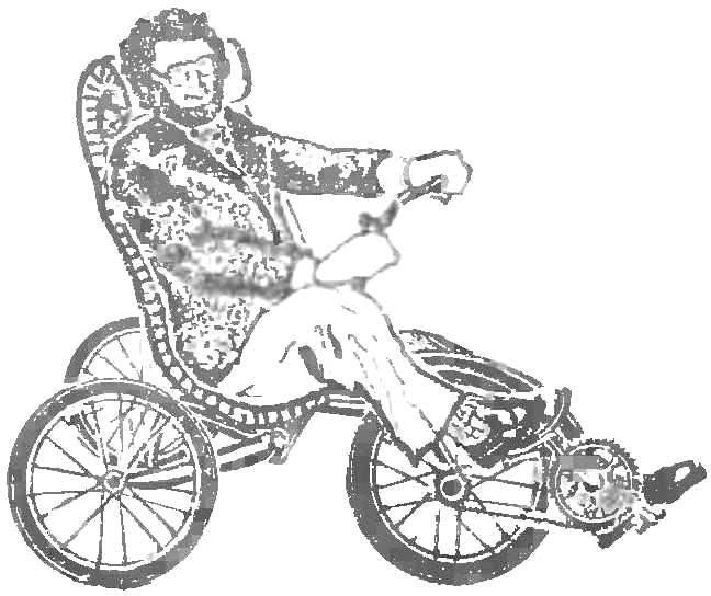 Fig. 8. Bike Swedish designer. Is it only for comfort?