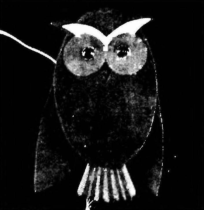 E-OWL
