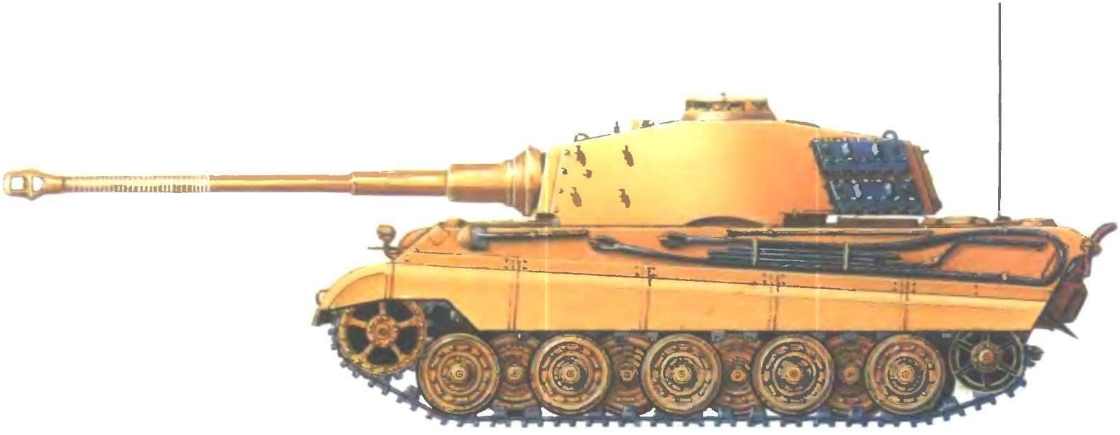 Pz. VI Ausf.B. 503-й тяжелый танковый батальон СС. Район Данцига, март 1945 года