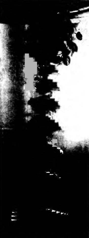 Подставка с клепками различной длины (с центральным или боковым расположением отверстия для штыря)