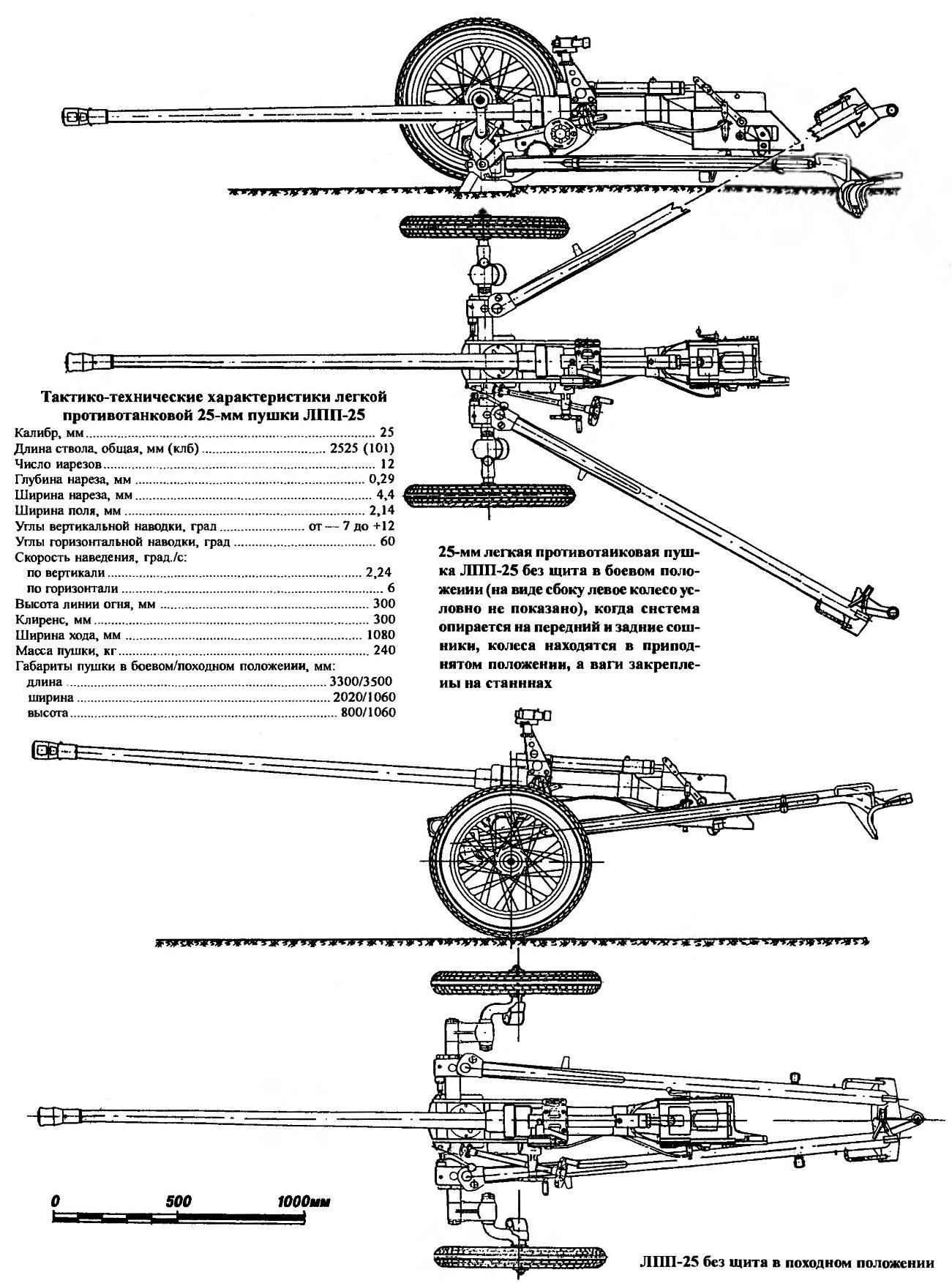 LPP-25