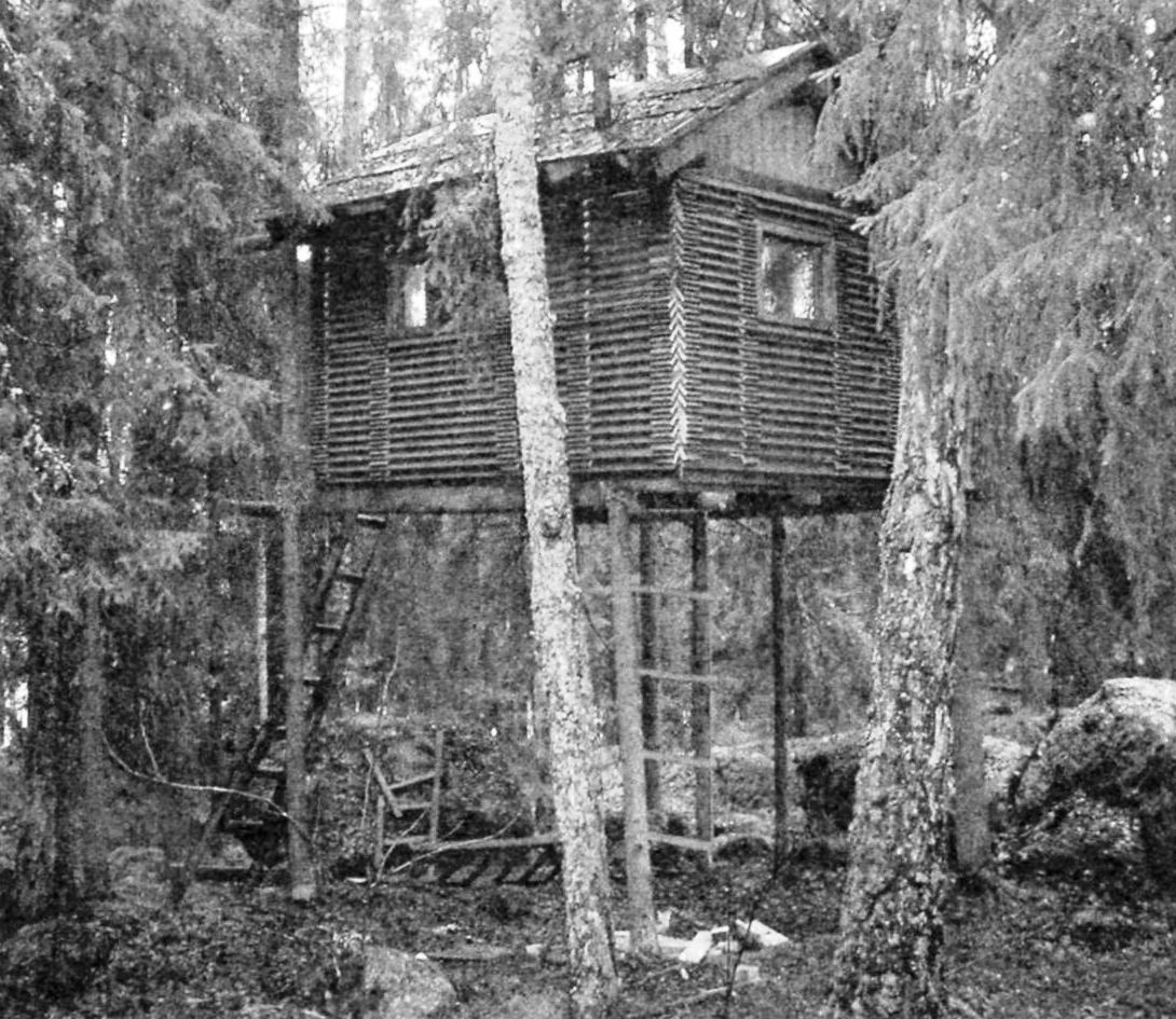 Готовый домик на опорах-деревьях