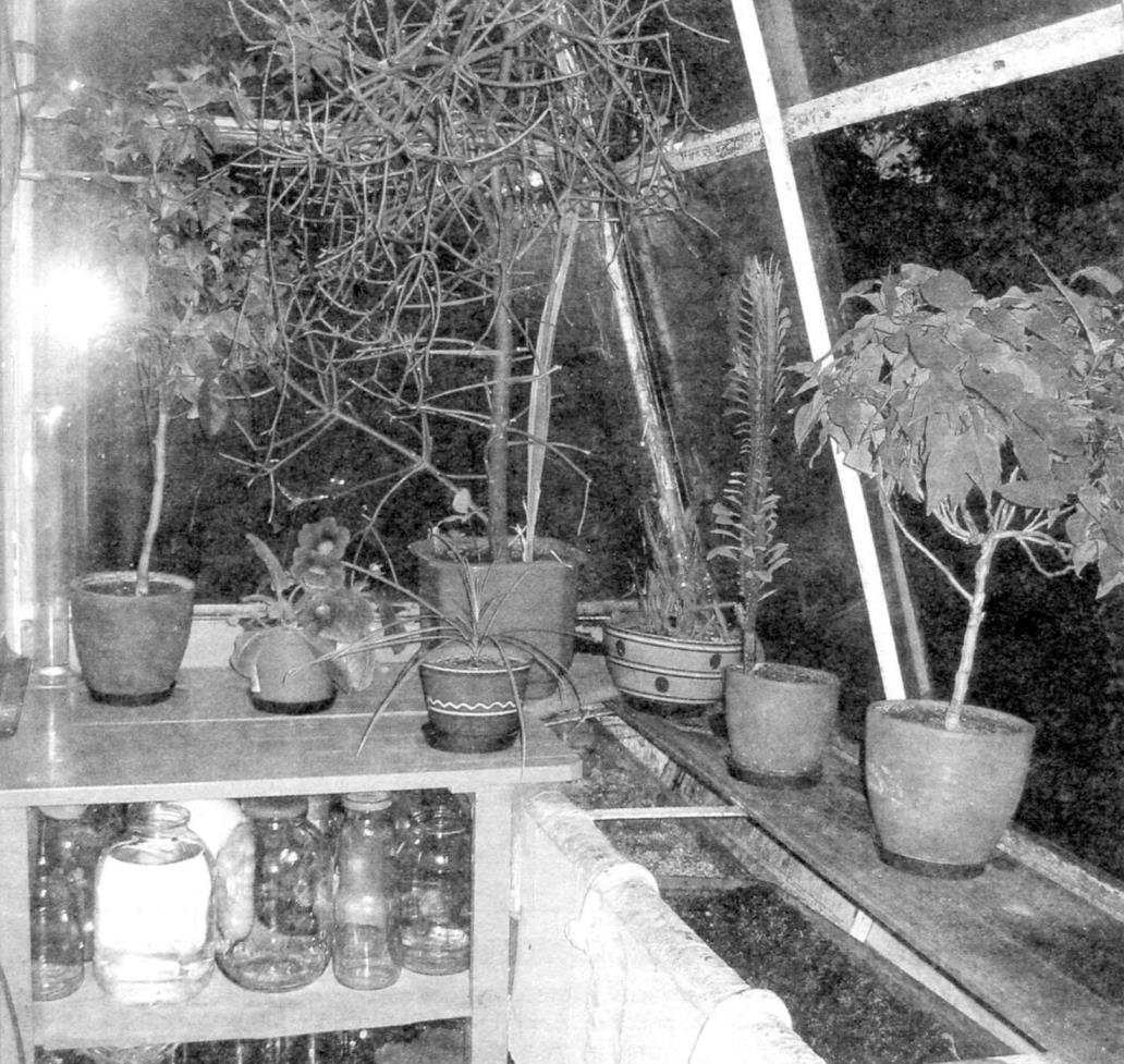 Часть интерьера «прирощенного» балкона