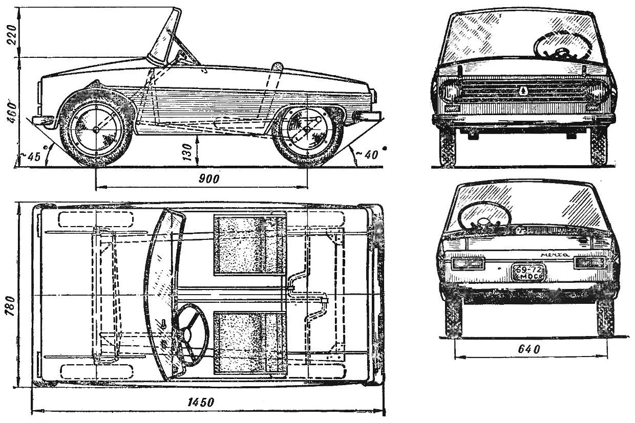 Fig. 1. General view of the double pedaling car