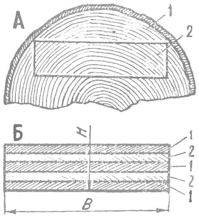 Рис. 2. Заготовки воздушного винта