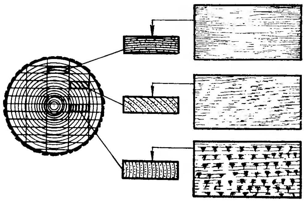 Рис. 2. Схема распиловки ствола (справа — вид на бруски сверху)