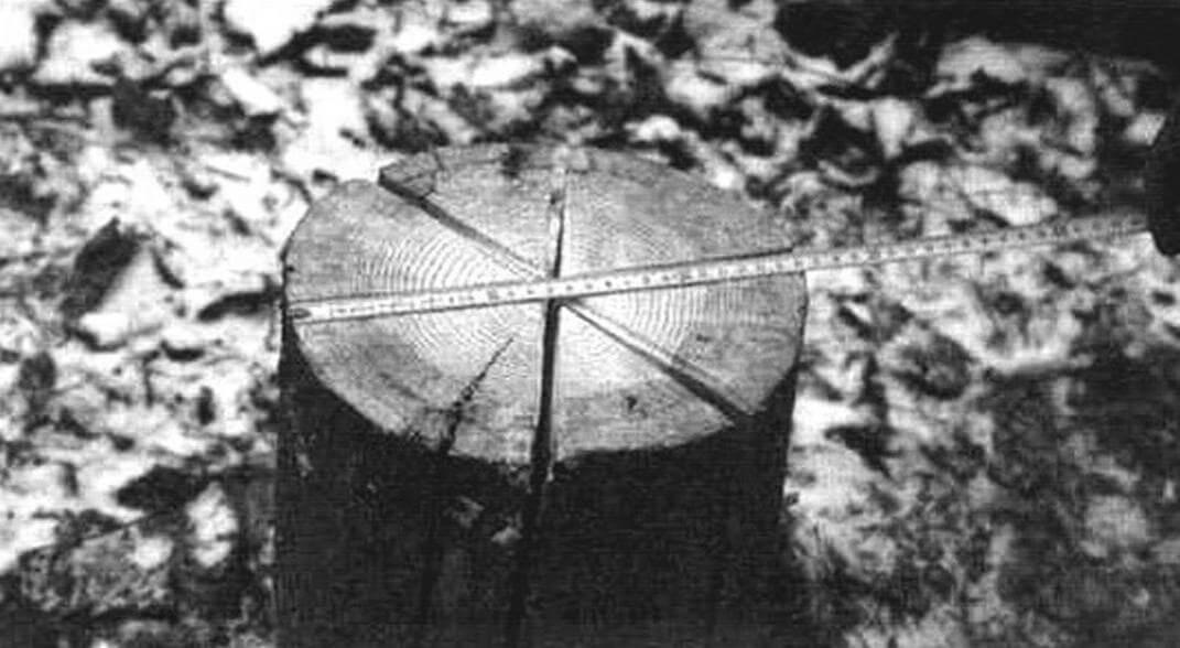 Для бытовых нужд вполне хватит столбика диаметром 250-300 мм