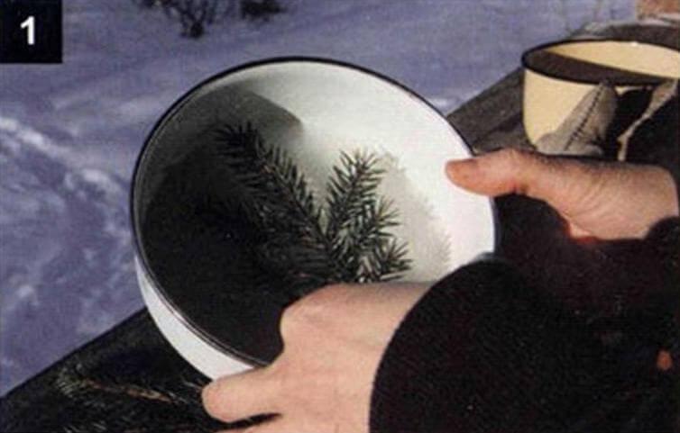 Налейте в форму немного воды, примерно на сантиметр, и выставьте ее на мороз. Когда вода превратится в ледяной диск, поместите на него «наполнитель», расположив как-нибудь поинтереснее