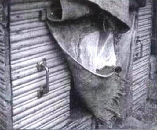 Шторка приоткрыта для щенят