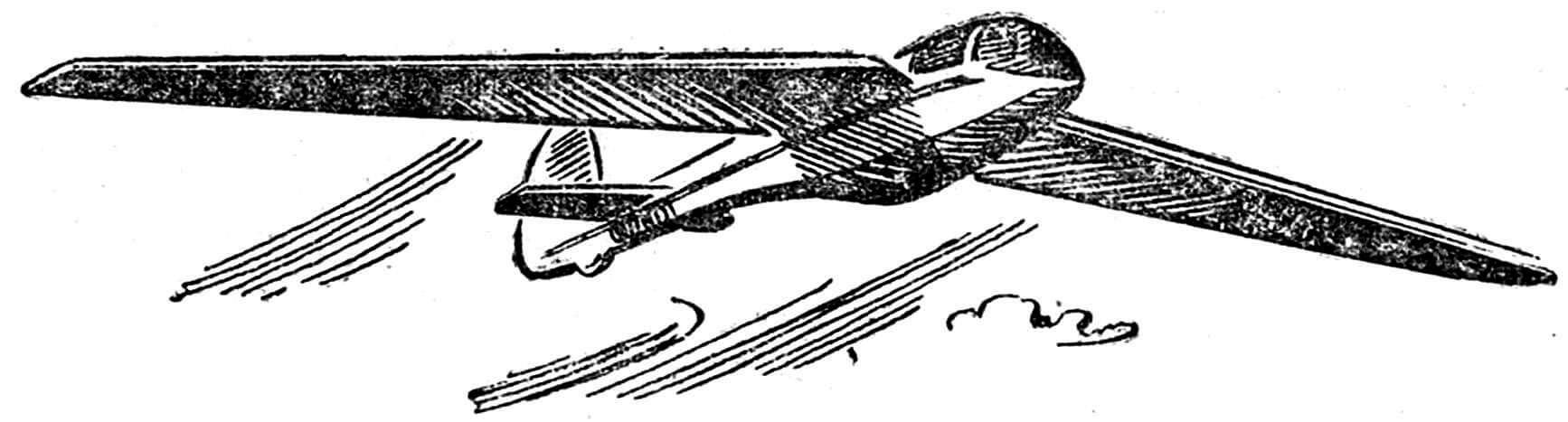 Рис. 4. Планер-птицелет «Кашук» с самомашущими крыльями.