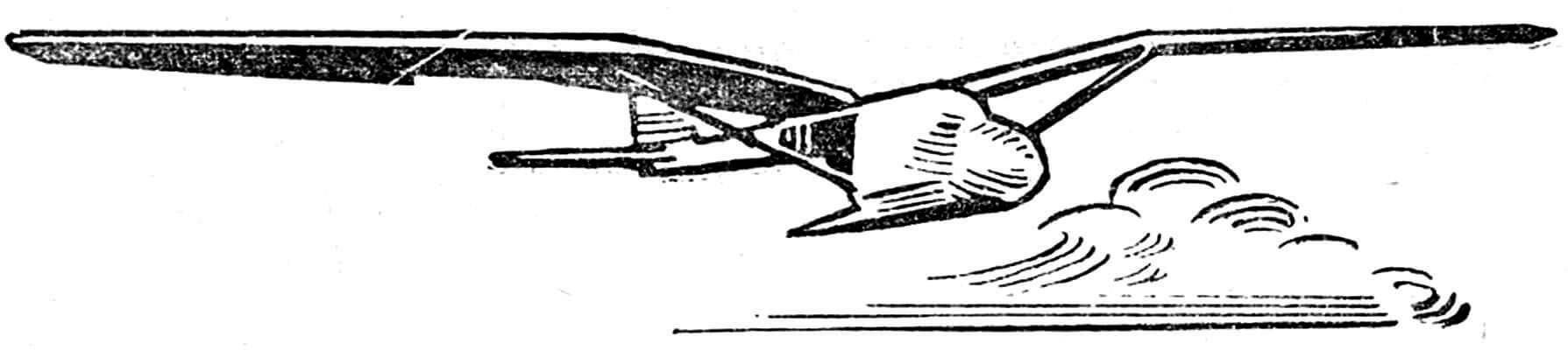 Рис. 5. Планер-орнитоптер американца Моола.