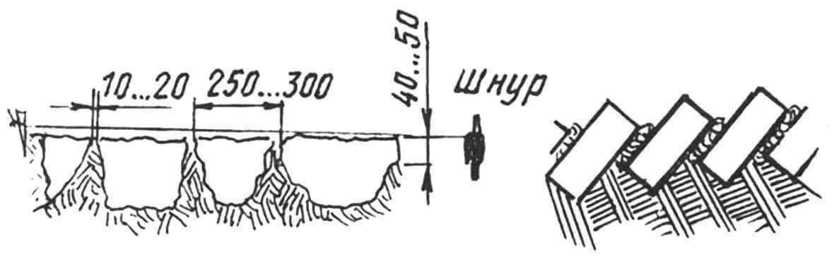 Рис. 10. Бордюр дорожки: слева - природный камень, справа - кирпич