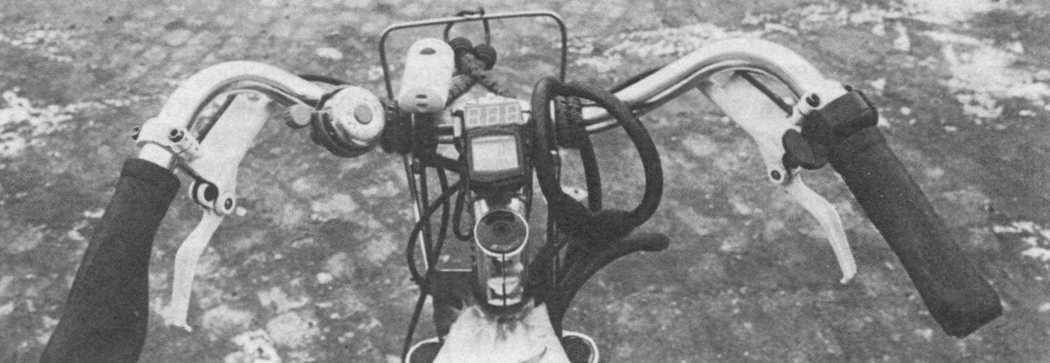 На руле находятся велокомпьютер, показывающий скорость и пробег, индикатор заряда АКБ и звуковой сигнал