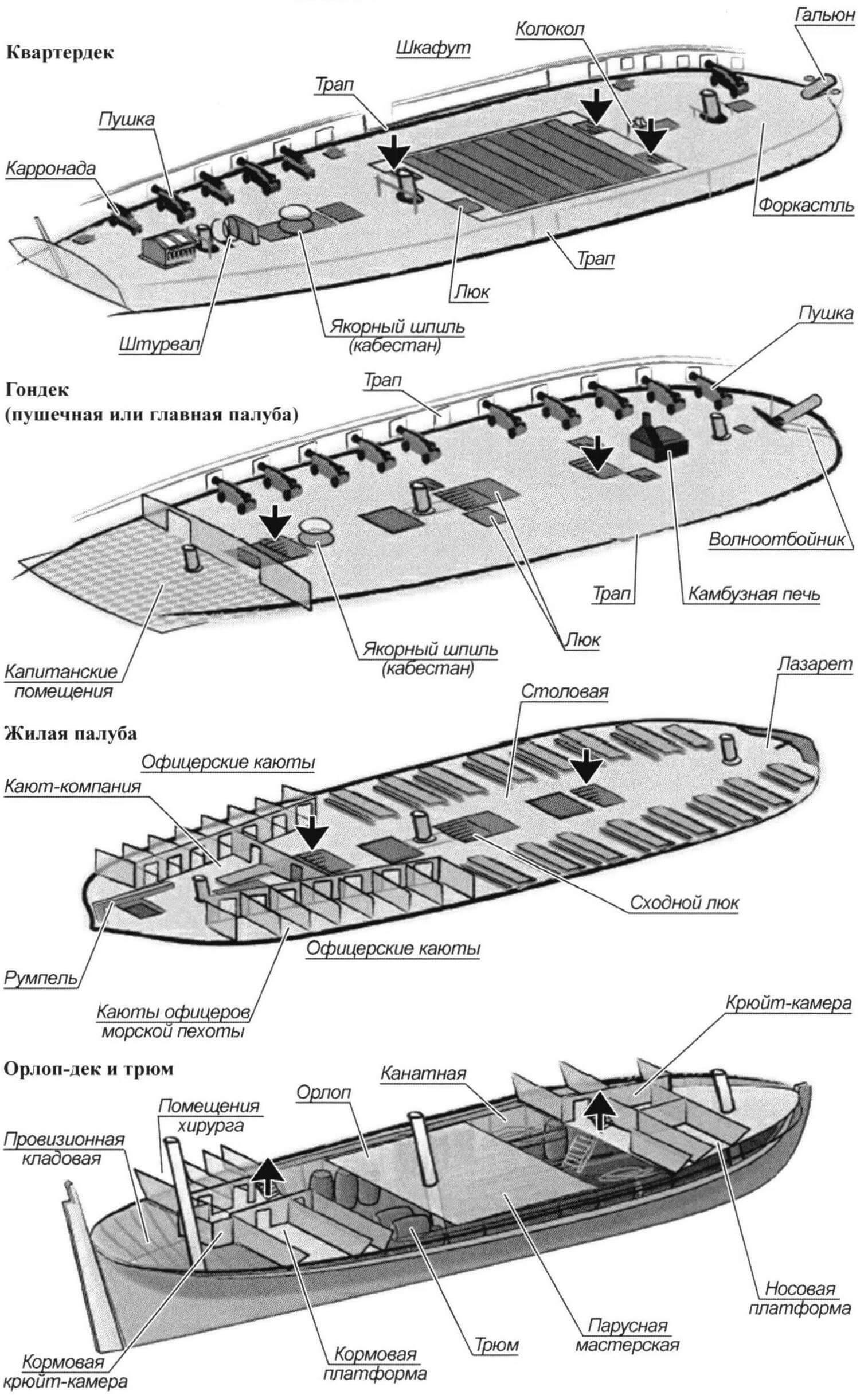 Палубы и трюм фрегата «Тринкомали»